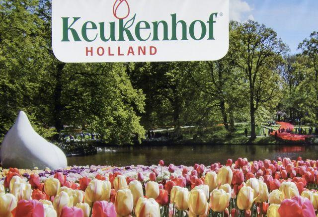 The Keukenhof 2018