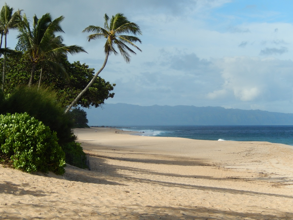 O'ahu, Hawaii, the AmericanParadise