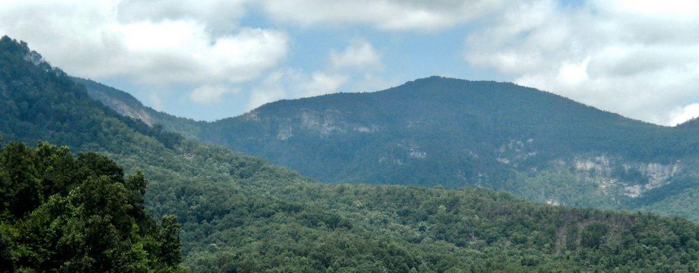 You Must Visit This Arboretum in the Blue RidgeMountains