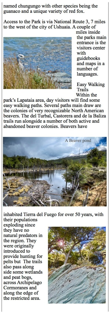 beaver ponds and glaciers Hiking trails in Tierra del Fuego National Park, Ushuaia Argentina