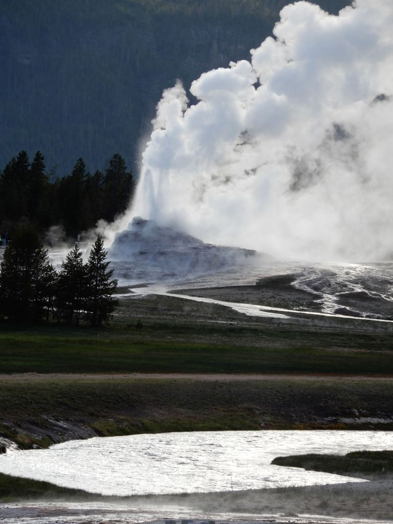 geysers in the lower basin